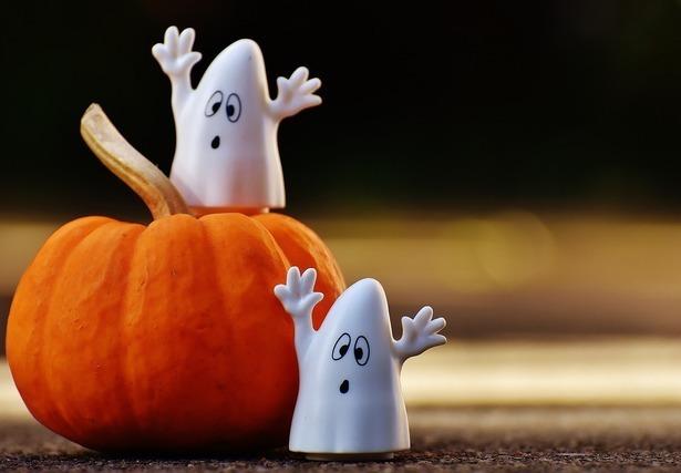 ハロウィンのかぼちゃと幽霊2匹
