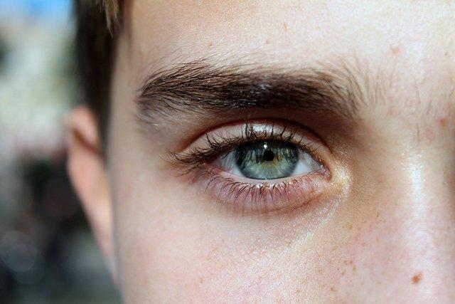 眉毛の濃い人