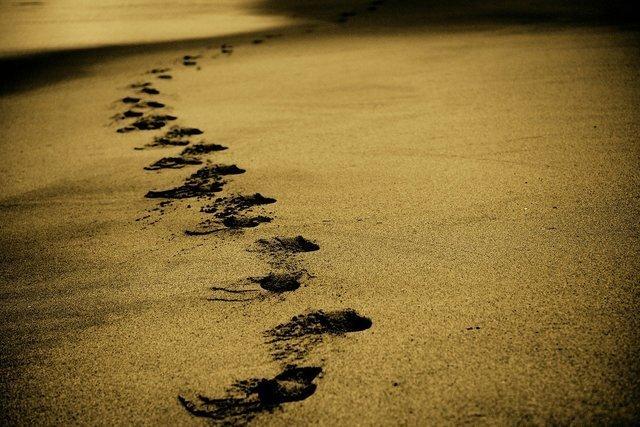 砂浜に残る足跡