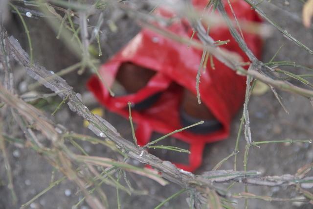 赤いシューズケース