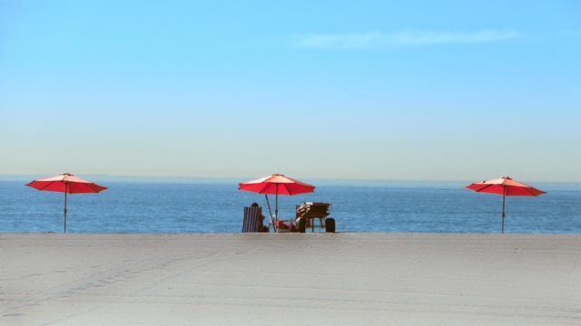 ビーチパラソルをたてた海岸