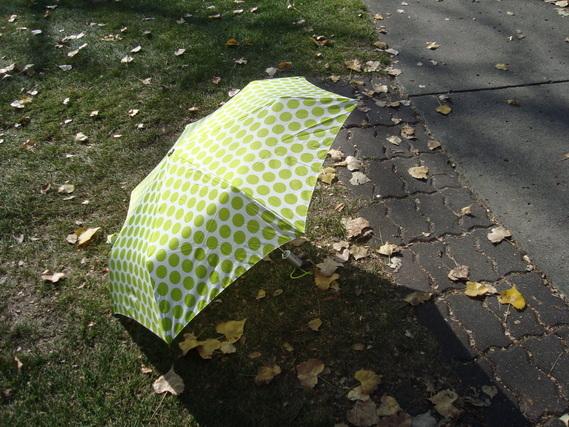 折り畳み傘1