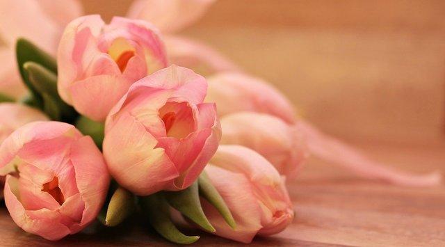 ベビーピンクのバラの花束