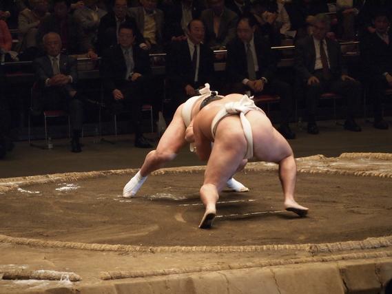 相撲を取る
