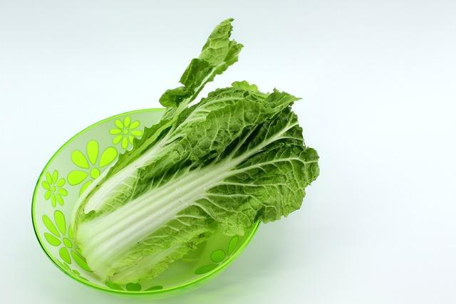 新鮮な白菜