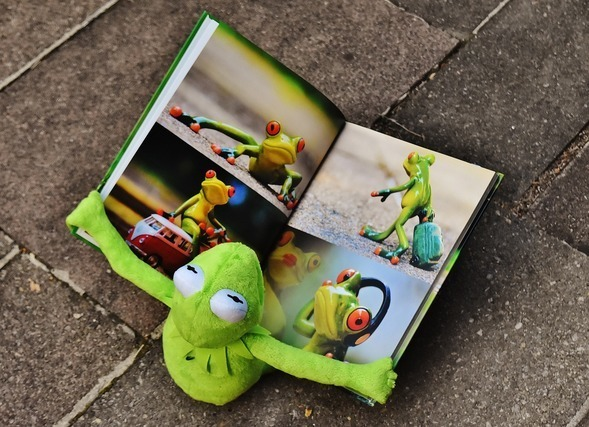 カエルの本を見るカエル