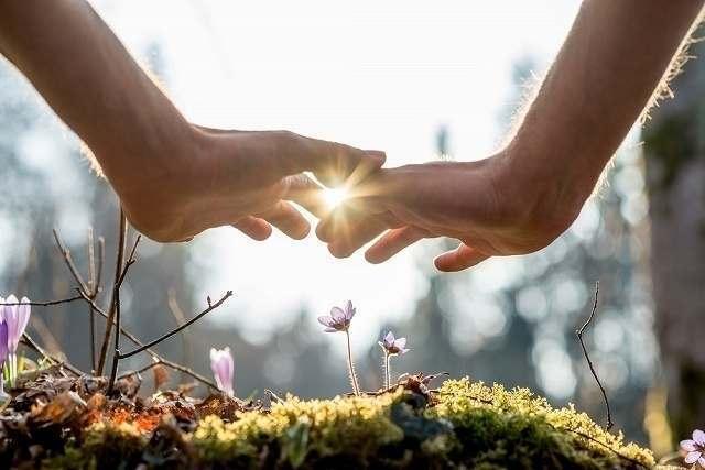 光のなか小さな紫の花に手をかざす二つの手