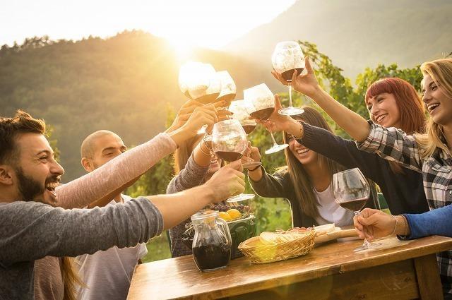 乾杯する男女グループ