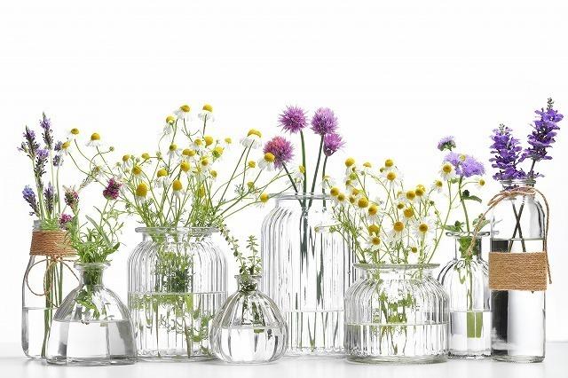 透明な花瓶に入った生け花