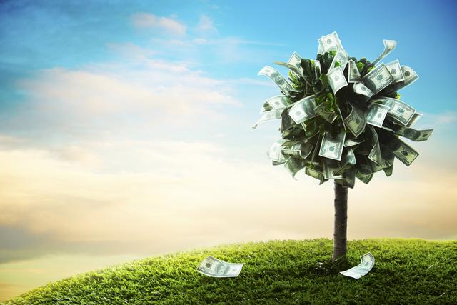 お金が成る木