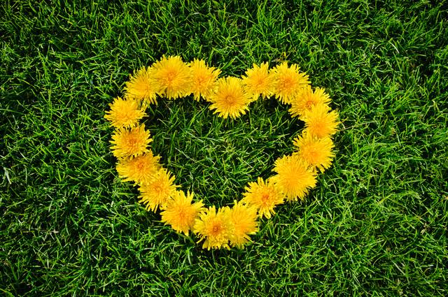 感謝を表す花飾り